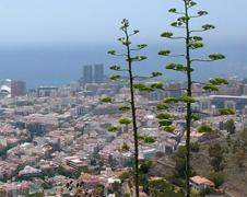 Santa Cruz de Tenerife | Puerto accesible